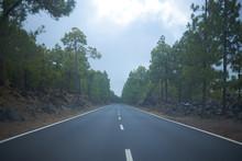 Carretera A Través De Un Bosq...
