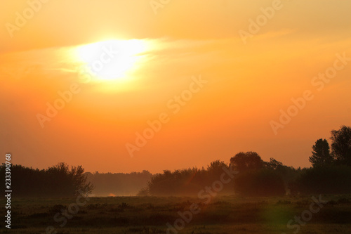 In de dag Zonsondergang Spring sunrise landscape over the meadows along the Vistula river in Mazovia region in Poland.