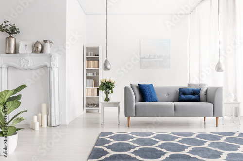 Foto Symmetry in design of luxury new york style living room with elegant grey couch