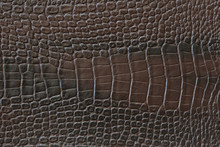 Texture Of Crocodile Artificial Leather Of Brown Color.