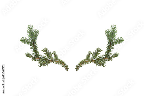Fotografía 3D rendering of deer horns made of fir branches isolated on white background
