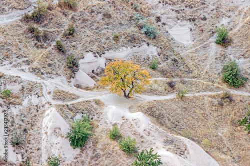 Poster Donkergrijs landscape of rocky formation in cappadocia
