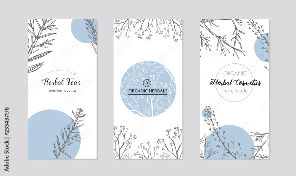 Fototapety, obrazy: Leaflets with healing herb plants vector. Set of cards or box covers for cosmetics and skincare products.