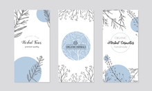Leaflets With Healing Herb Plants Vector. Set Of Cards Or Box Covers For Cosmetics And Skincare Products.