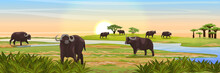 A Herd Of African Black Buffalo At The Watering Near The River. Realistic Vector Landscape. Nature And Animals Of Africa. Reserves And National Parks.