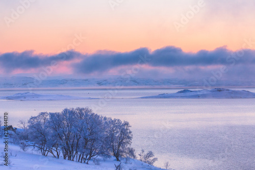 Printed kitchen splashbacks Purple Beautiful winter landscape with trees covered with frost