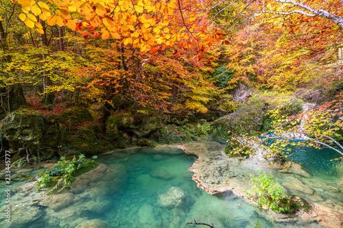 autumnal landscape at Urederra source, Spain