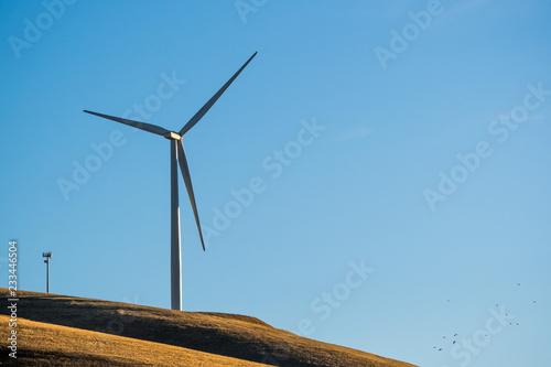 Fotografie, Obraz  Wind turbine on the hills of east San Francisco bay area, Altamont Pass, Livermo
