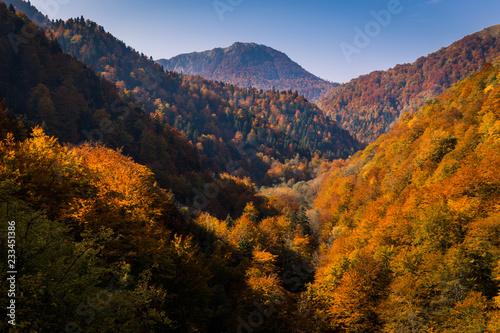 gora-zelengora-jesienia