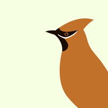 Waxwings  Vector Illustration   Flat Style  Profile