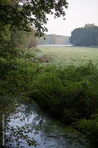 Foto op Aluminium Olijf Landschaft