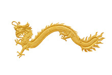 Golden Dragon Isolated