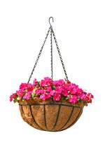 Hanging Basket Of Beautiful Fl...