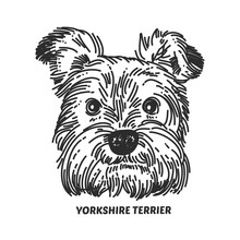 Yorkshire Terrier Face. Dog He...