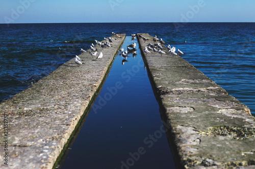 Fototapeta the beatiful sandy beachside full of graffity near the black sea, odessa