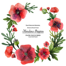 Wreaths From  Meadow Poppies For Decoration. Watercolor On A White Backdrop,  Isolated, Path Included