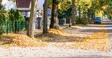 Herbstlaub0611a
