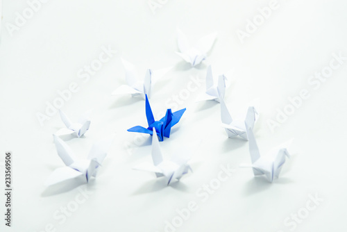 Close up blue bird flying different through a group of white bird,Leadership concept Canvas Print