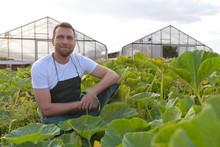 Portrait Of A Smiling Farmer I...