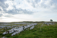 Limestone Grykes Above Malham In The Yorkshire Dales National Park
