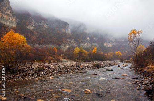 Foto op Aluminium Chocoladebruin осенний пейзаж..
