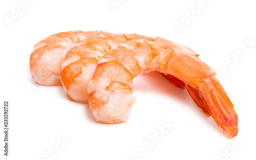 boiled shrimp isolated