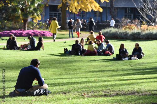 Fotografie, Obraz  parc pause alimentation diner sandwich soleil gazon vert ville