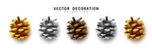 Realistic Pine Cones Set Isolated On White Background