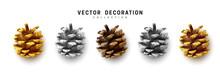 Realistic Pine Cones Set Isola...