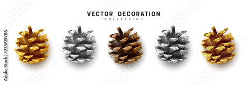 Fotografie, Obraz Realistic pine cones set isolated on white background