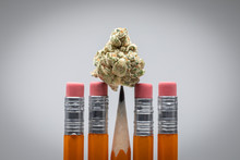Marijuana Bud On The Point Of A School Pencil, With Dramatic Light