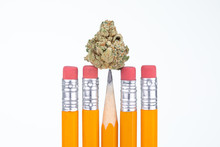 Cannabis Bud On The Point Of A School Pencil, Isolated On White