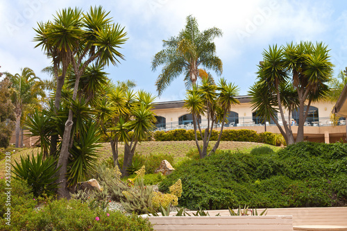 Tropical garden in Point Loma California.