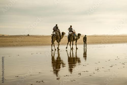 Fotografia  marokko, essaouira kamelreiter am strand