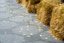 A Pedestrian Sidewalk Of Tile Paved With A Pattern Covered With Yellow Autumn Leaves And Complex Square Sheaves Of Hay With Space For Text.