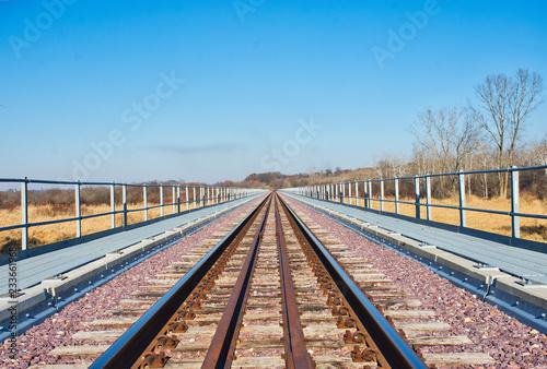 Fotografie, Obraz  Mass Transit by Rail - Rail Lines in Winter