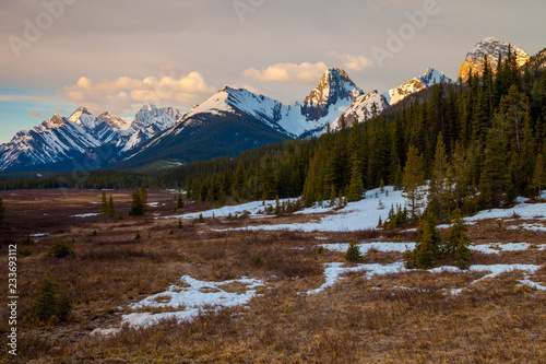 Stickers pour porte Pierre, Sable The mountains and a meadow in Kananaskis Alberta, Canada
