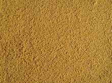 Decorticated Organic Millet Grains. Food Background And Texture.