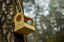 Designer Bird Feeder Birdhouse Suspended In A Pine Tree. Bird House. The Pine And Sky