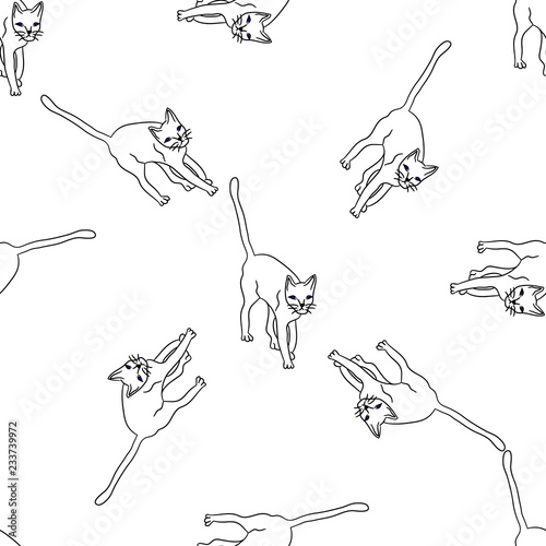 Photo  Pattern with hand drawn cats.
