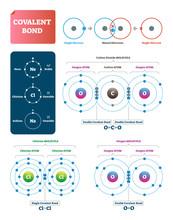 Covalent Bond Vector Illustrat...