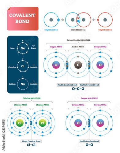 Photo Covalent bond vector illustration