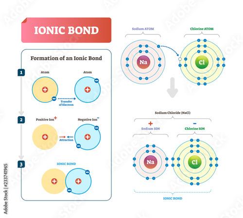Ionic bond vector illustration Wallpaper Mural