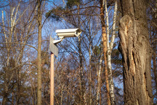 CCTV Camera In The Woods.