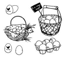 Set Of Farmer's Eggs Drawing...