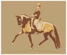 Equestrian Sport, Dressage. Vintage Illustration Of A Rider On A Horse.