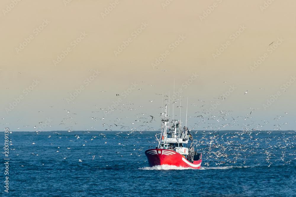 Fototapety, obrazy: Fishing boat returning