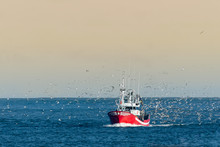 Fishing Boat Returning