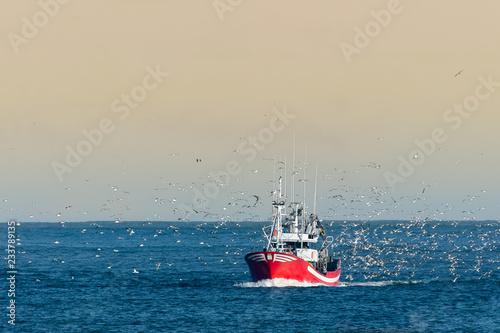 Carta da parati Fishing boat returning