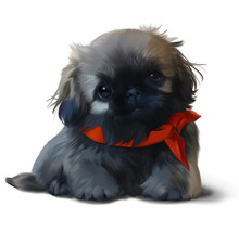 A Pekingese Puppy In A Red Sca...